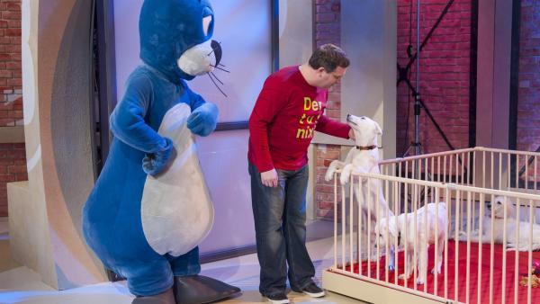 Piet Flosse, Elton und die jungen Hunde mit einer guten Spürnase | Rechte: ZDF/Ralf Wilschewski