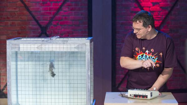 Elton demonstriert eine Unterwasserexplosion. | Rechte: ZDF/Ralf Wilschewski