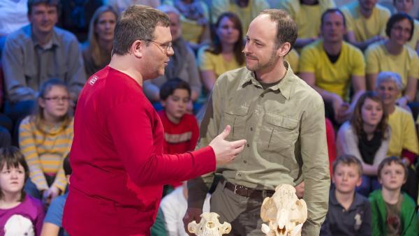 Elton und der NABU Wolfsexperte Markus Bathen. Und welcher Schädel ist der Wolfsschädel? | Rechte: ZDF/Ralf Wilschewski