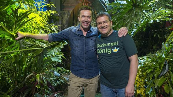 Dirk Steffens und Elton im 1,2 oder 3-Regenwald. | Rechte: ZDF und Ralf Wilschewski
