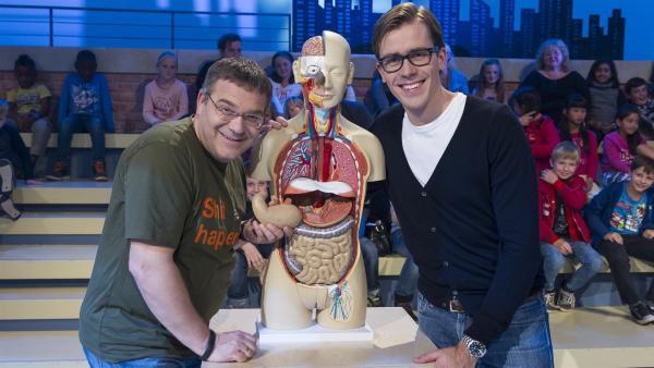 Elton und Dr. Johannes Wimmer mit einem Modell des menschlichen Torsos | Rechte: ZDF/Ralf Wilschewski