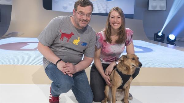 Haustiere mag jeder gerne. Aber wie man mit ihnen artgerecht umgeht, das erklärt Tierschutzlehrerin Melanie Reiner mit Hündin Maya in der heutigen Sendung. | Rechte: ZDF/Ralf Wilschewski