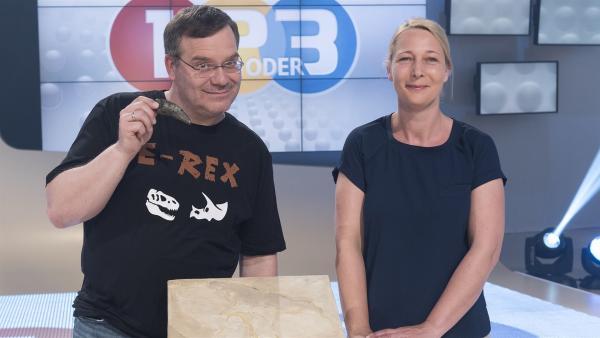 Heute geht es auf eine Reise in die Vorzeit bei 1, 2 oder 3. Dr. Daniela Schwarz vom Naturkundemuseum Berlin hat echte Fossilien mitgebracht und Elton hat da so einige Fragen. | Rechte: ZDF/Ralf Wilschewski