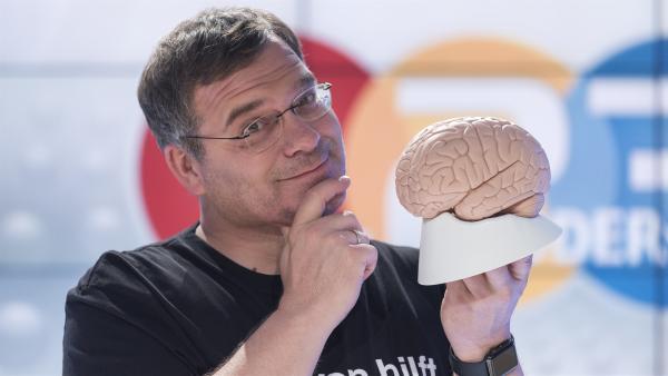 Heute sind bei 1, 2 oder 3 ganz besonders schlaue Köpfe gefragt: Denn es dreht sich heute alles um die grauen Zellen, oder anders gesagt um das Gehirn! | Rechte: ZDF/Ralf Wilschewski