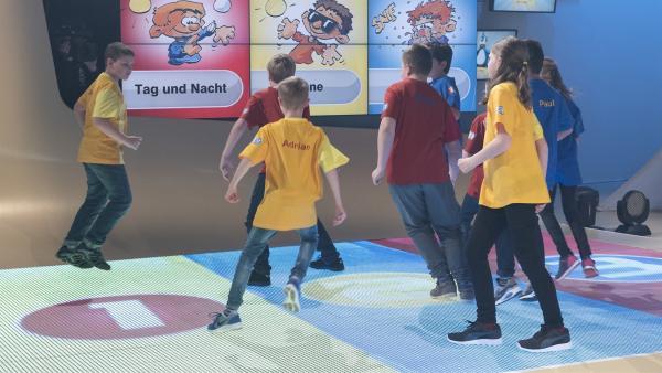 Die Kandidaten hüpfen eifrig auf den Sprungfeldern umher. | Rechte: ZDF/Ralf Wilschewski