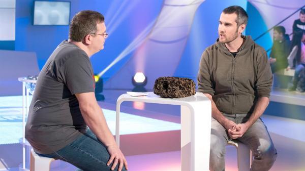 Biologe Dr. Christoph von Beeren berichtet jede Menge Beeindruckendes aus der Welt der Ameisen. | Rechte: ZDF/Ralf Wilschewski