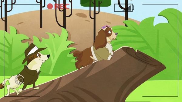Dandy und seine Hundefreundin Madeleine haben Probeaufnahmen für einen Werbespot. Dandy gibt sich große Mühe, um die Rolle zu bekommen. Denn dann wäre er in der Nähe von Madeleine. | Rechte: ZDF/Edebé Audiovisual/B-Water/ZDF E/CCMA/RTVE