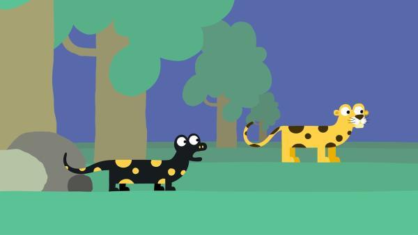 Der Feuersalamander bemerkt, wie ähnlich er dem Leoparden ist.   Rechte: KiKA/SWR/Studio FILM BILDER/Julia Ocker