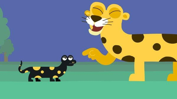 Der Leopard macht sich über den Feuersalamander lustig. | Rechte: KiKA/SWR/Film Bilder/Julia Ocker
