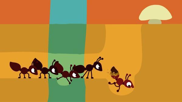 Die anderen Ameisen sind nicht erfreut über die Unterbrechung. | Rechte: KiKA/SWR/Film Bilder/Julia Ocker