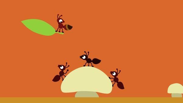 Die kleine Ameise fliegt allen davon. | Rechte: KiKA/SWR/Studio FILM BILDER/Julia Ocker