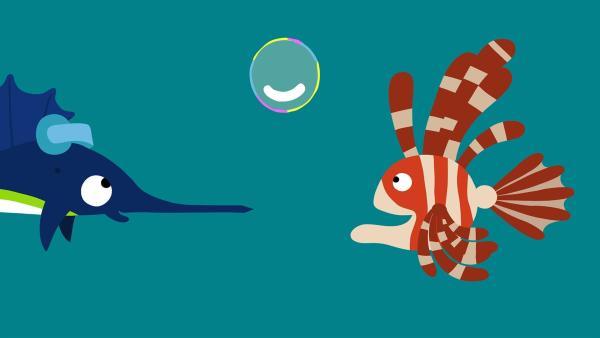 Der Schwertfisch hat eine neue Blase gemacht.   Rechte: KiKA/SWR/Film Bilder/Julia Ocker