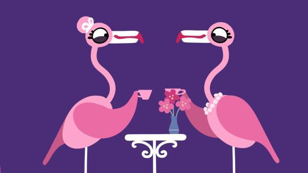Die Flamingos genießen ihr Kaffeekränzchen. | Rechte: KiKA/SWR/Studio FILM BILDER/Julia Ocker