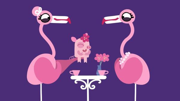 Die Flamingos sind ganz entzückt von dem niedlichen, kleinen Schweinchen. | Rechte: KiKA/SWR/Film Bilder/Julia Ocker