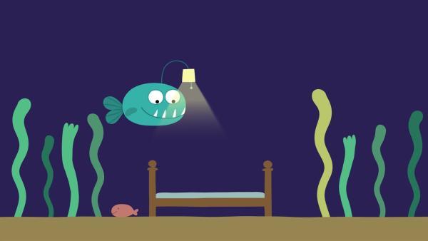 Der kleine Anglerfisch legt sich zu Bett. | Rechte: KiKA/SWR/Film Bilder/Julia Ocker