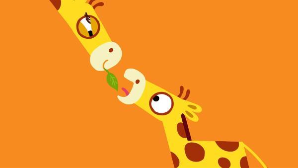 Endlich wird der kleinen Giraffe ein Blatt angeboten. Oder doch nicht? | Rechte: KiKA/SWR/Studio FILM BILDER/Julia Ocker