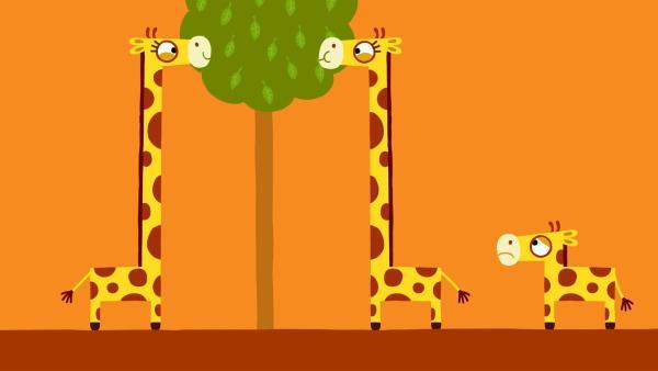 Niemand gibt der kleinen Giraffe etwas ab. | Rechte: KiKA/SWR/Film Bilder/Julia Ocker