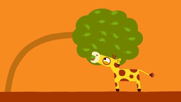 Dank des starken Windes bekommt die kleine Giraffe ein paar Blätter. | Rechte: KiKA/SWR/Film Bilder/Julia Ocker