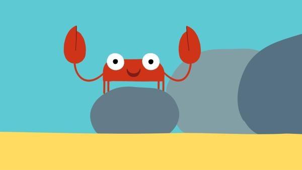 Die Krabbe hat Lust etwas zu zwicken. | Rechte: KiKA/SWR/Film Bilder/Julia Ocker