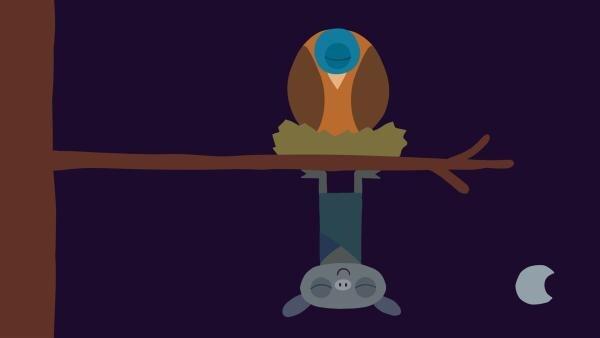Vogel und Fledermaus schlafen. | Rechte: KiKA/SWR/Film Bilder/Julia Ocker
