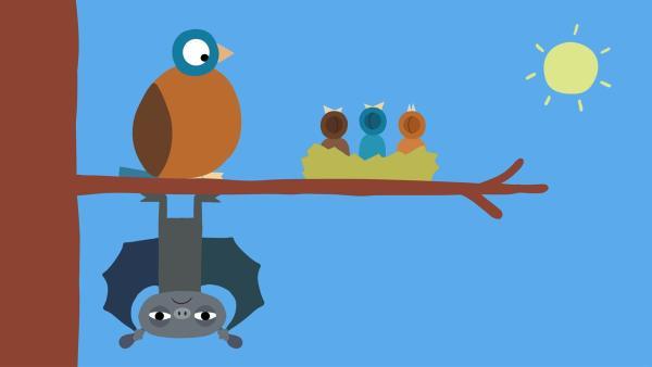 Die Fledermaus ist wütend, weil sie nicht schlafen kann. | Rechte: KiKA/SWR/Film Bilder/Julia Ocker