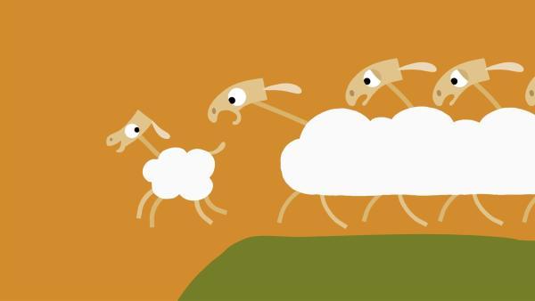 Furchtlos entfernt sich das kleine Schaf von der Gruppe. | Rechte: KiKA/SWR/Film Bilder/Julia Ocker