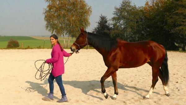 Anna lernt reiten -  Mit Pferden sprechen (Folge 5) / Respekt und Vertrauen sind wichtig beim Sprechen mit Pferden. Anna versucht es mit Liselotte.<br/>| Bild: BR / Text und Bild Medienproduktion GmbH & Co.KG | Rechte: BR / Text und Bild Medienproduktion GmbH & Co.KG