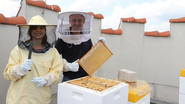 Biene / Jeder Imker braucht einen Stockmeißel. Damit hebt er die Waben aus den Zargen. Thomas zeigt Anna eine Honigwabe.  | Bild: BR / Text und Bild Medienproduktion | Rechte: BR / Text und Bild Medienproduktion