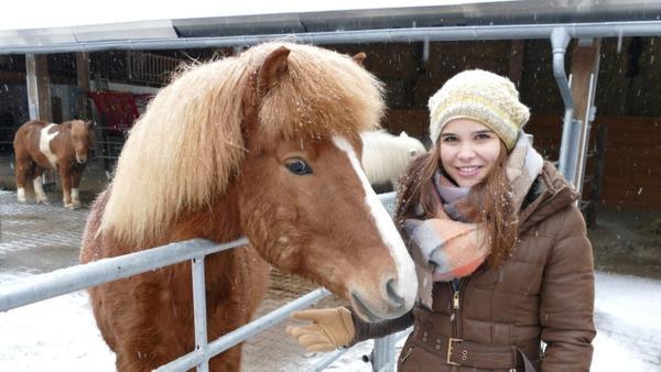 Islandpferd / Minusgrade und Schneestürme machen Isländern dank ihres dichten Fells nichts aus. | Bild: BR / Text und Bild Medienproduktion GmbH & Co.KG | Rechte: BR / Text und Bild Medienproduktion GmbH & Co.KG