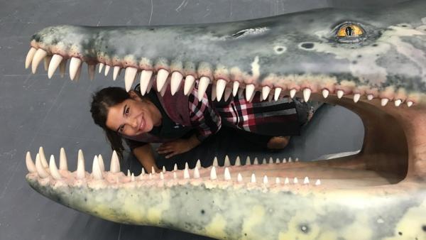 Die gigantischen Meeressaurier | Bild: br/text und bild | Rechte: br/text und bild