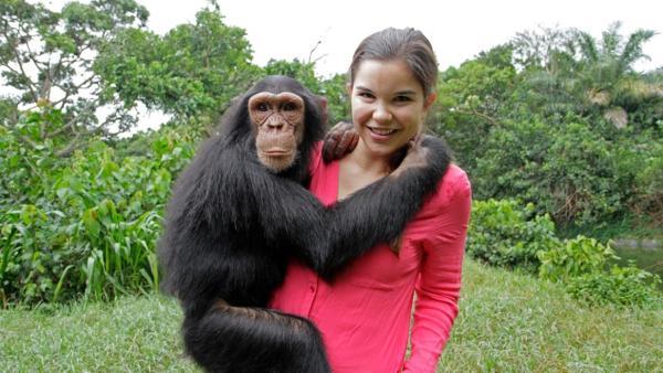 Schlau wie die Schimpansen / Der junge Schimpansen-Waise freuen sich über die Zuwendung von Tierreporterin Anna. | Bild: BR/Text und Bild Medienproduktion GmbH & Co.KG | Rechte: BR/Text und Bild Medienproduktion GmbH & Co.KG