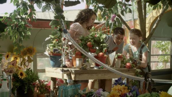 Anne (Addison Holley, re.) zeigt Shania (Adrianna Di Liello, li.) und Nick (Jadiel Dowlin, Mi.) ihr Tomatenexperiment.   Rechte: KiKA/Sinking Ship Entertainment