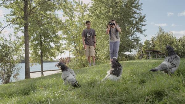 Shania (Adrianna Di Liello) beobachtet Tauben im Park.  | Rechte: KiKA/Sinking Ship Entertainment