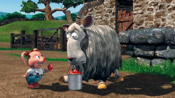 Leithammel Wiley sorgt wieder einmal für jede Menge Spaß auf dem Bauernhof. | Rechte: KiKA/2004 Entara Limited