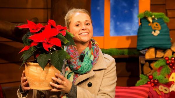 Singa bekommt einen Weihnachtsstern. | Rechte: KiKA/Ronja Bachofer