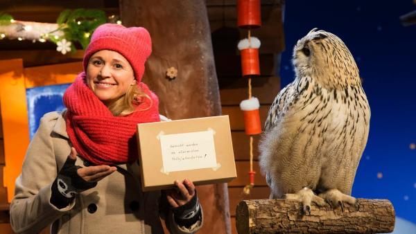 Singa bekommt eine Rätselaufgabe. | Rechte: KiKA/Tizian Hempel