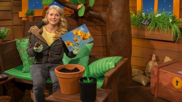 Singa pflanzt eine Pflanze. | Rechte: KiKA/Josefine Liesfeld