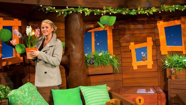 Singa entdeckt eine Hyazinthe im Baumhaus. | Rechte: KiKA/Josefine Liesfeld
