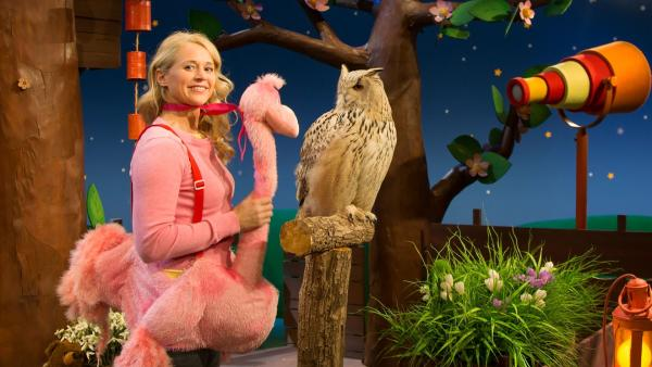 Singa ist als Flamingo verkleidet. | Rechte: KiKA/Josefine Liesfeld