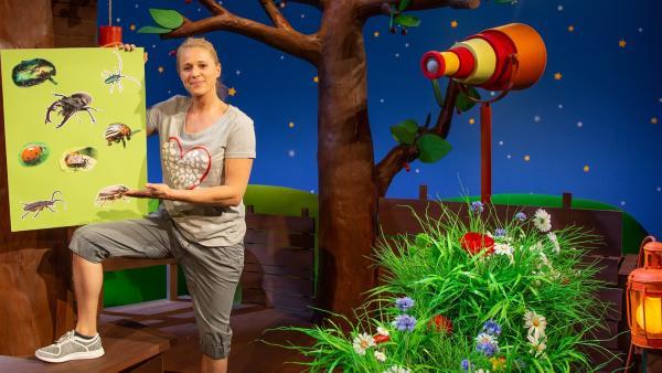 Singa gestaltet ein Käfer-Poster. | Rechte: KiKA/Dorit Jackermeier