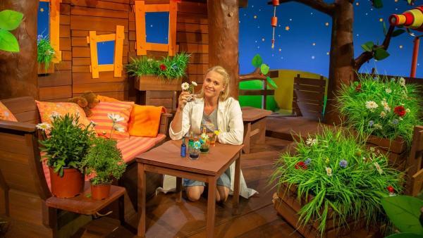 Singa färbt Pflanzen ein. | Rechte: KiKA/Vanessa Loos