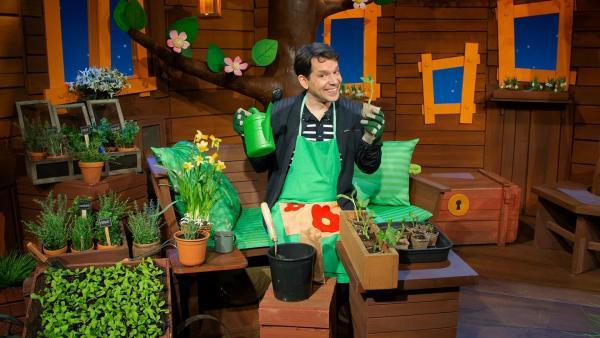 Juri pflanzt eine Puffbohne. | Rechte: KiKA/Hannah Michalowicz