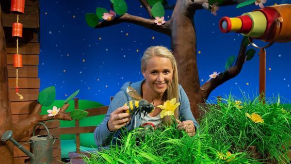 Singa erklärt warum die Biene summt. | Rechte: KiKA/Josefine Liesfeld