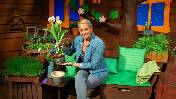 Singa erklärt wie eine Pflanze aufgebaut ist. | Rechte: KiKA/Josefine Liesfeld