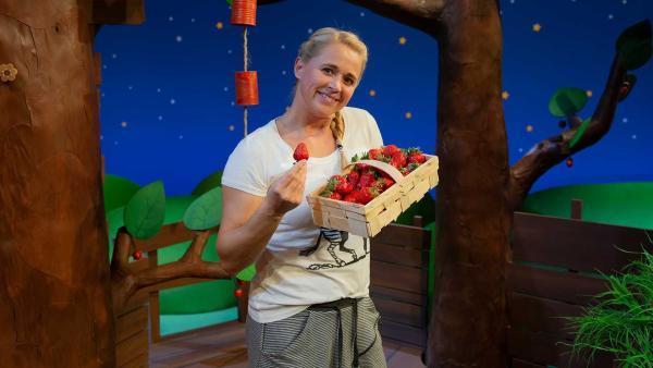 Singa hat Erdbeeren dabei. | Rechte: KiKA/Josefine Liesfeld