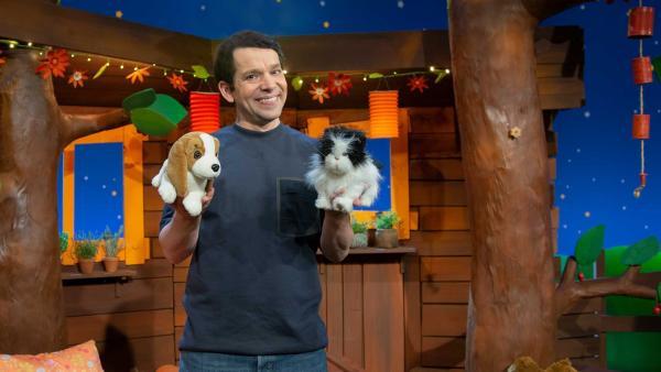 Juri erklärt die Sprache von Hunden und Katzen. | Rechte: KiKA/Hannah Michalowicz