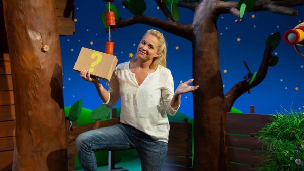 Singa findet einen Ratekarton. | Rechte: KiKA/Josefine Liesfeld