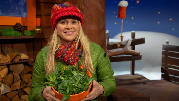 Singa erzählt über Feldsalat. | Rechte: KiKA/Josefine Liesfeld