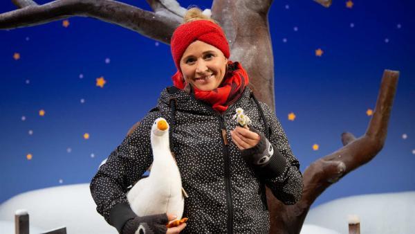 Singa und die Gänseblümchen | Rechte: KiKA/Josefine Liesfeld