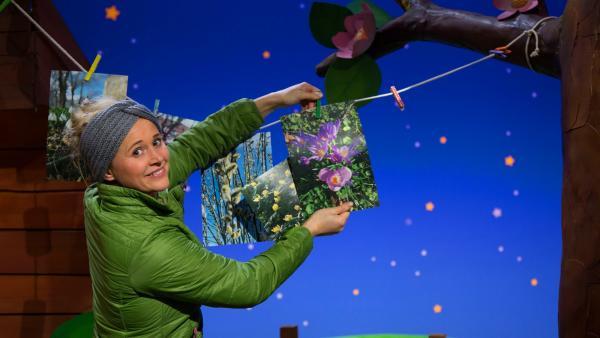 Singa hängt Frühlingsfotos auf. | Rechte: KiKA/Josefine Liesfeld